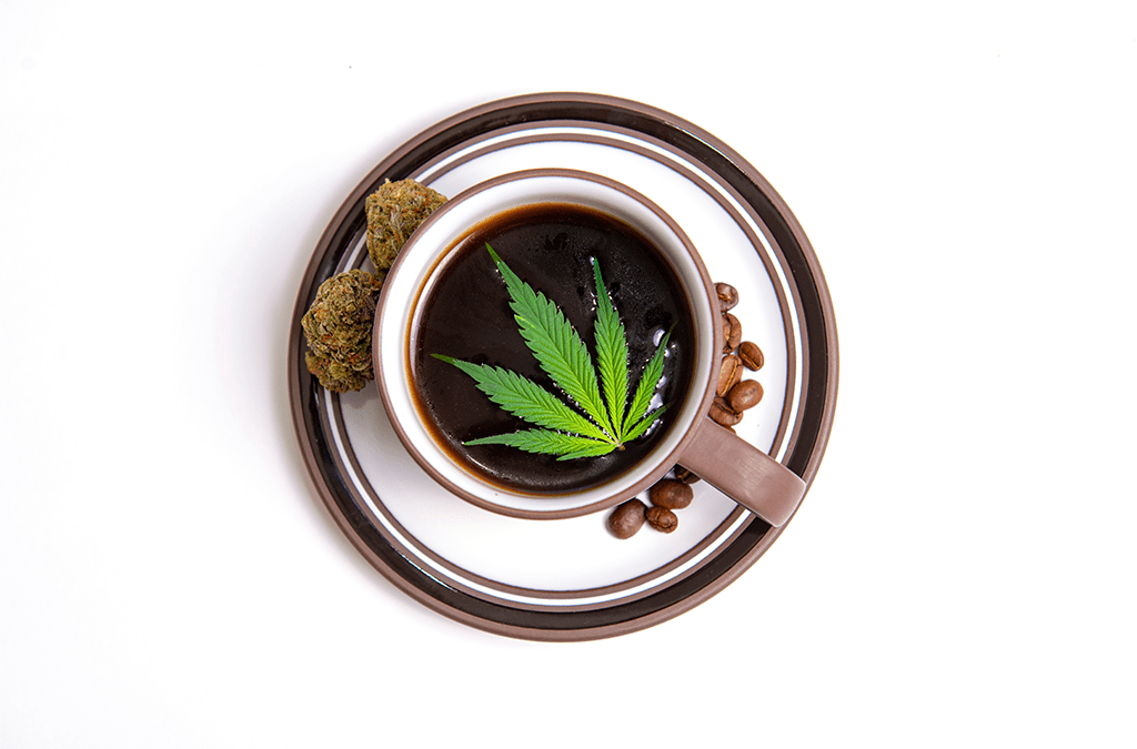 Cannabis Cookies vs Cocktails – what is the difference?