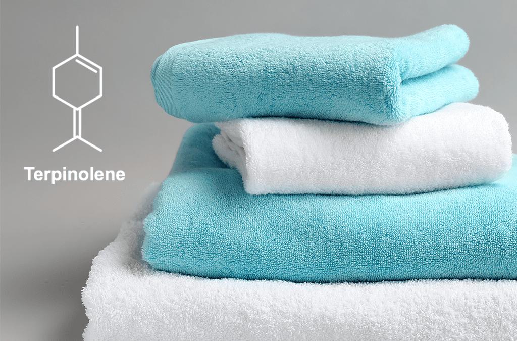Terpinolene strains can produce a sedative effect.